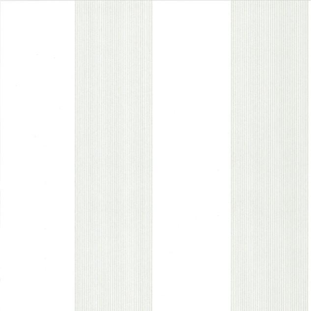 Elephant Stripe - Slip.jpg