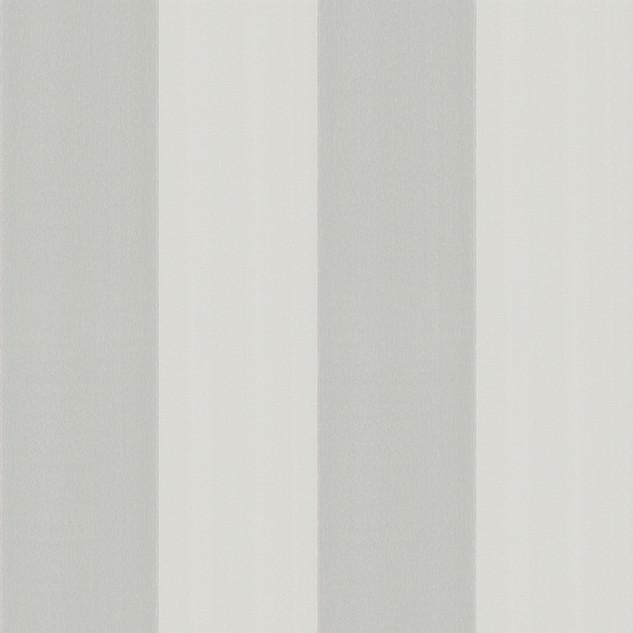 Broad Stripe - Forum.jpg