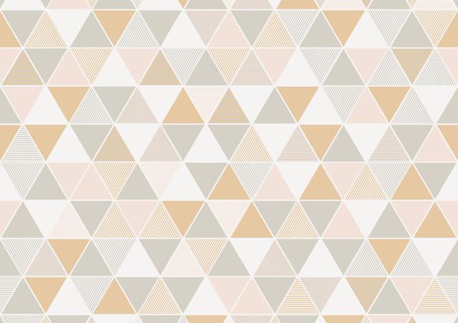 Triangular_Image_Flatshot_Item_8810.jpg