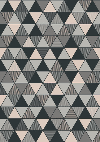Triangular_Image_Flatshot_Item_8811.jpg