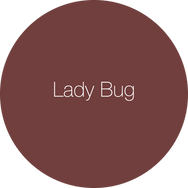 Lady Bug with name.png
