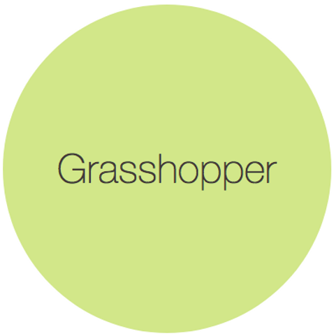 Earthborn Eco Chic - Grasshopper