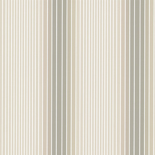 Ombre Stripe - Soapstone-Doric.jpg