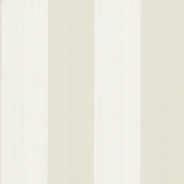 Elephant Stripe - Sharp Stone.jpg