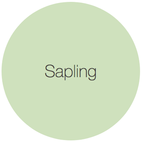Earthborn Eco Chic - Sapling