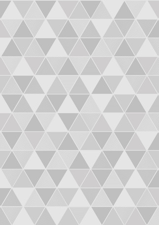 Triangular_Image_Flatshot_Item_8812.jpg