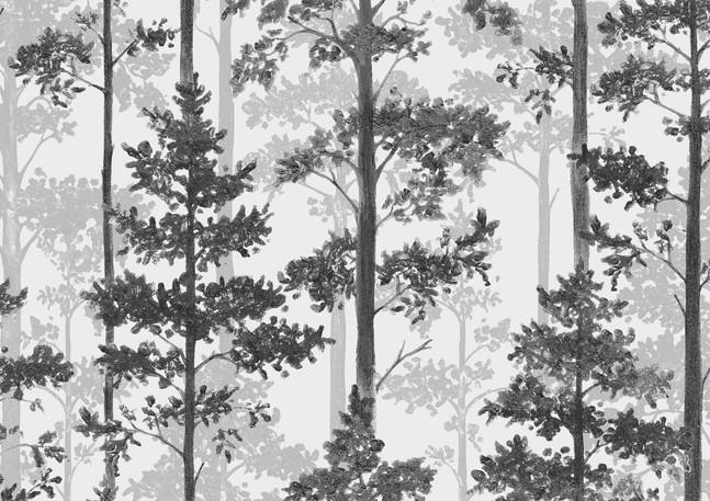 Pine_Image_Flatshot_Item_8827.jpg