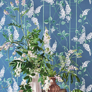C_S_Botanical__Botanica__Wisteria__Wiste