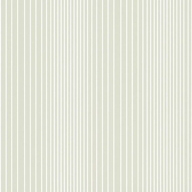 Ombre Plain - Seashell.jpg
