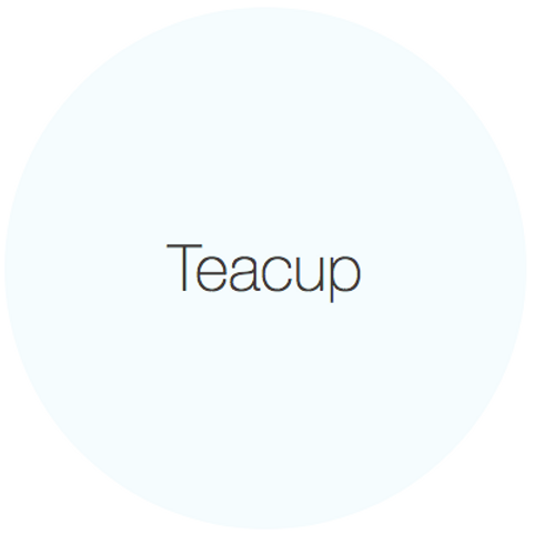 Earthborn Eggshell No17 - Teacup