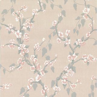 Sakura - Petal.jpg