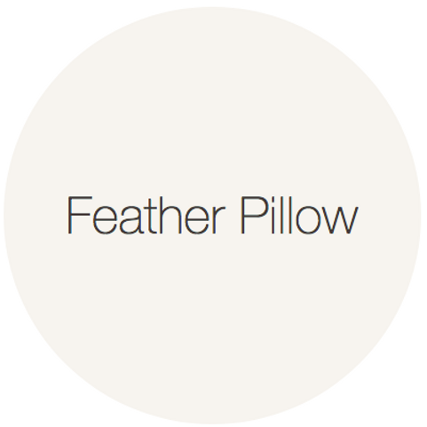 Earthborn Eggshell No17 - Feather Pillow