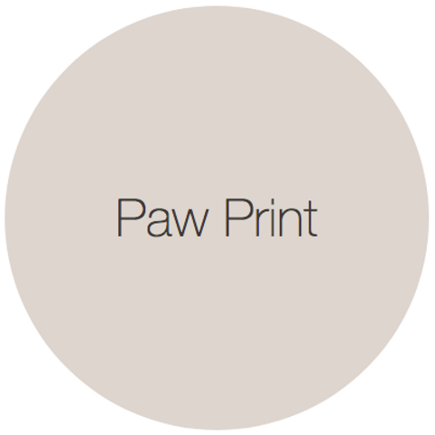 Earthborn Clay Paint - Paw Print