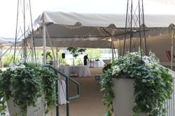tent+entry+Delta