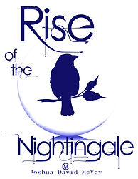 nightingale cover_edited.jpg