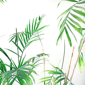 Green Palm 30X30 - web.jpg