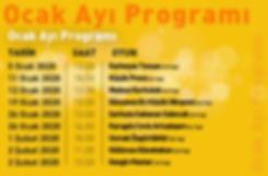 program---yedek---ocak.png