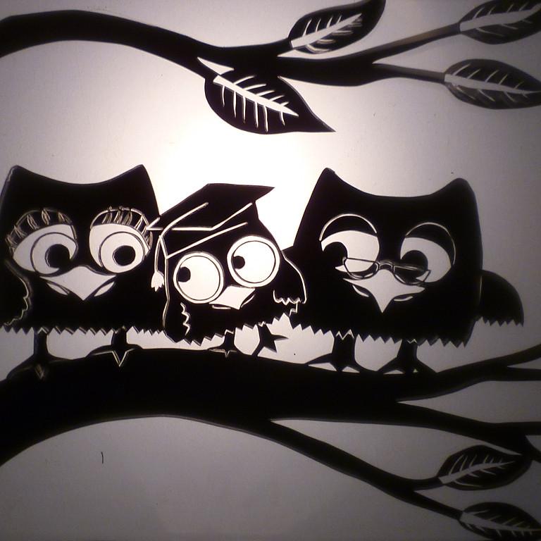 Owl's Apprentise / Acemi Baykuş - Australia / Avustralya