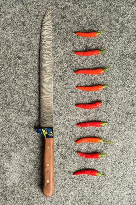 9 inch wooden handle fillet knife.jpg