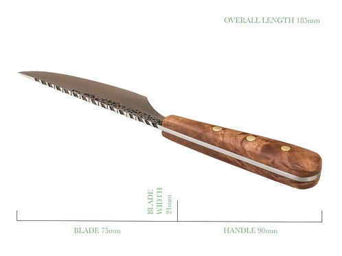 Decorative Utility Skinning Knife with Contoured Spine