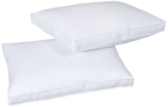 Down Touch Pillow.jpg