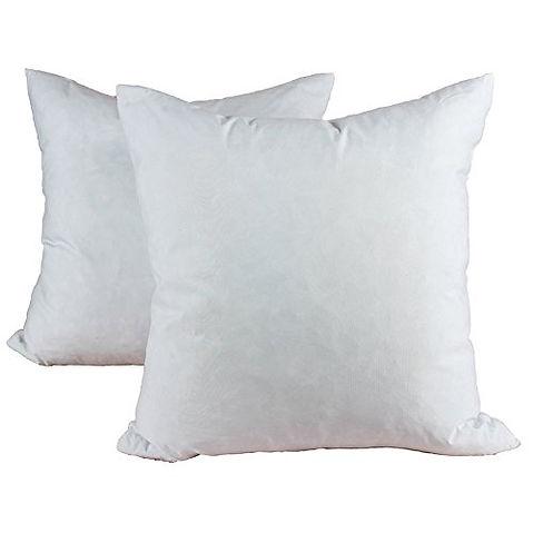 Feather Cushion.jpg