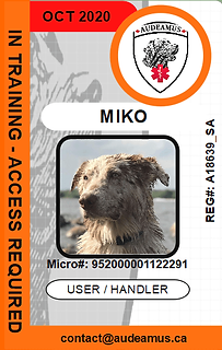 06MIKO.png