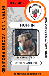 06HUFFIN.png