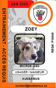 06ZOEY.png