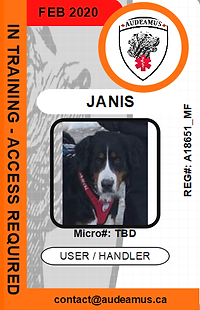 06JANIS.png