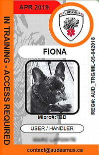 05FIONA_edited.png