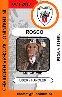 05ROSCO.png