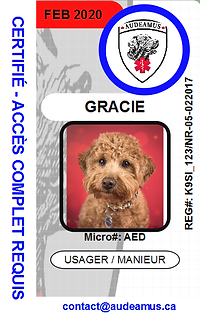 05GRACIE1.png