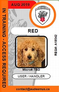 06RED.png