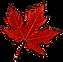 mape-leaf.png
