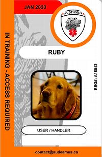 05_RUBY.e web.png