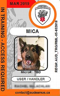 MICA.png
