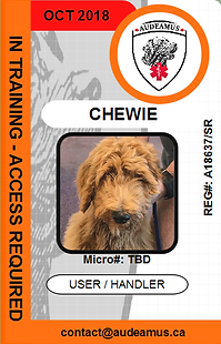06CHEWIE.png