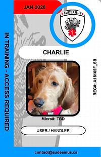 01_CHARLIE.e web2.png
