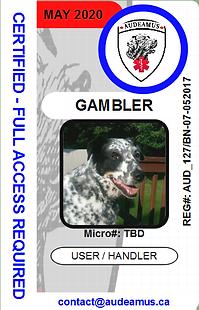 07GAMBLER.png