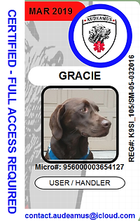 05GRACIE.png