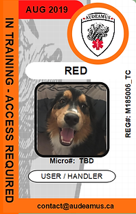 05RED.png