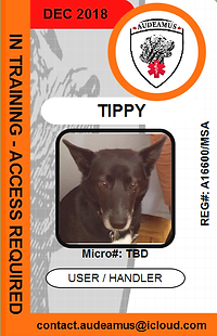 06TIPPY.png