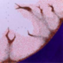 Drift 3.jpg