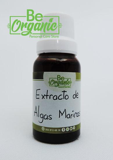 Extracto de algas marinas