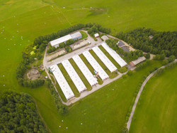 Large Poultry Farms