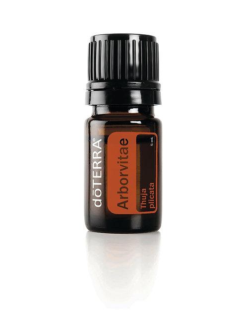 arborvitae essential oil doTERRA jackieisles.com