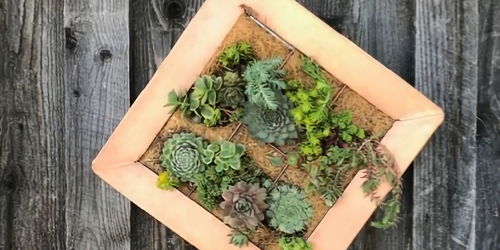 Outdoor/ Hardy Succulent Wall Planter Workshop