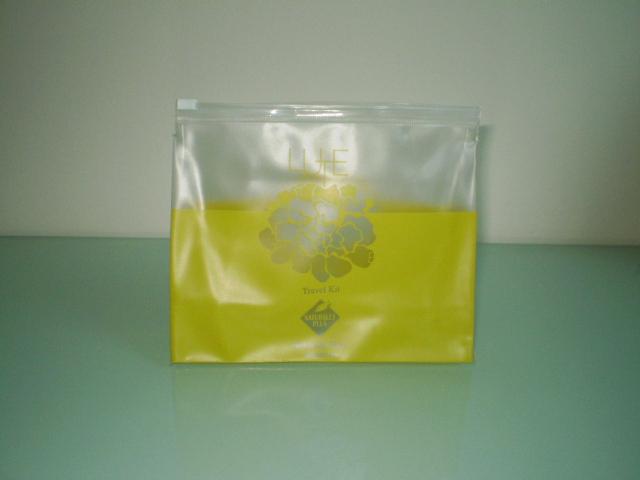 Translucent PVC/Nylon Travel Bag