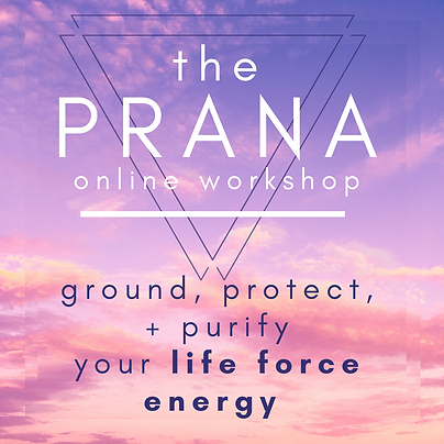 prana course (1).png